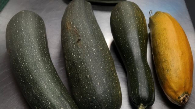 Image: 2020-10/1601972975_courgette.jpg